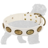 Stylish White Black Russian Terrier Collar with Oval Plates