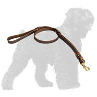 Reliable Leather Black Russian Terrier Leash with Braids