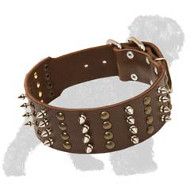 Hand-Decorated Leather Russian Terrier Collar with Spikes and Studs