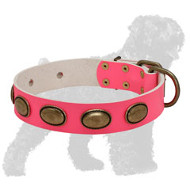 Pink Leather Black Russian Terrier Collar with Brass Oval Plates