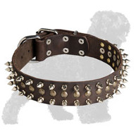 Decorated Leather Russian Terrier Collar with Spikes and Half Balls