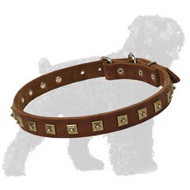 Amazing Hand-Made Leather Dog Collar for Russian Terriers