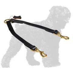 Carefully Stitched Leather Russian Terrier Coupler