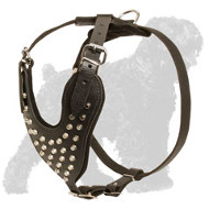 Marvellous Russian Terrier Leather Harness with Silver Colored Pyramids