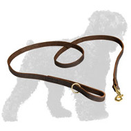 Top Quality Stitched Leather Russian Terrier Leash