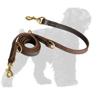 Multifunctional Leather Black Russian Terrier Leash