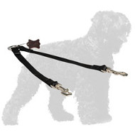 Stitched Nylon Russian Terrier Leash for Walking Two Dogs