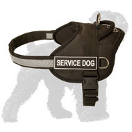 Adjustable Nylon Russian Terrier Harness with a Reflective Strap