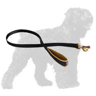 Water Proof Nylon Russian Terrier Leash with Soft Handle
