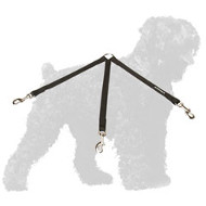 Triple Nylon Black Russian Terrier Coupler