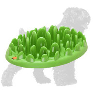 Grassy Shaped Plastic Feeder for Black Russian Terrier