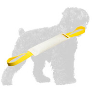 Top Quality Fire Hose Russian Terrier Bite Tug with Handles