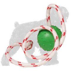 Solid Rubber Russian Terrier Ball on Rope
