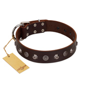 """Dark Chocolate"" Handmade FDT Artisan Brown Leather Black Russian Terrier Collar with Studs"