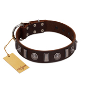 """Spiky Way"" FDT Artisan Brown Leather Black Russian Terrier Collar with Silver-Like Decorations"