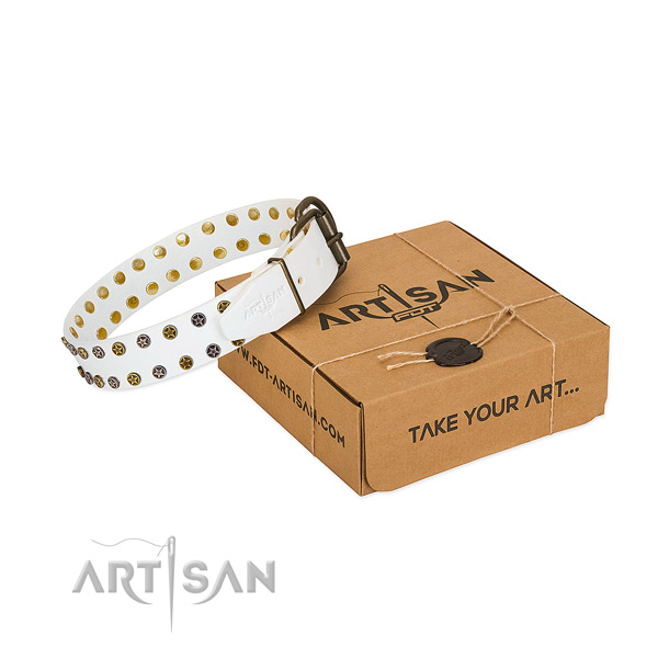 Exceptional natural leather dog collar with durable studs