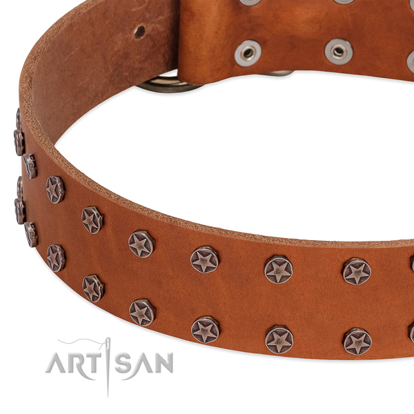 Comfortable genuine leather dog collar for comfy wearing