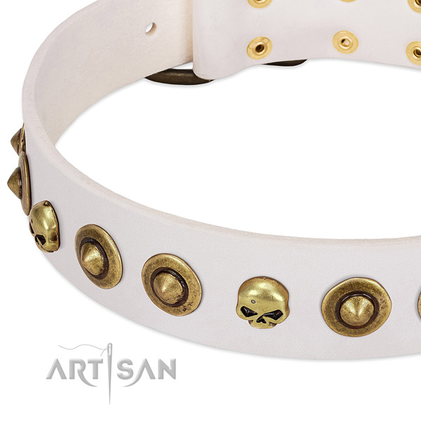 Impressive embellishments on leather collar for your canine