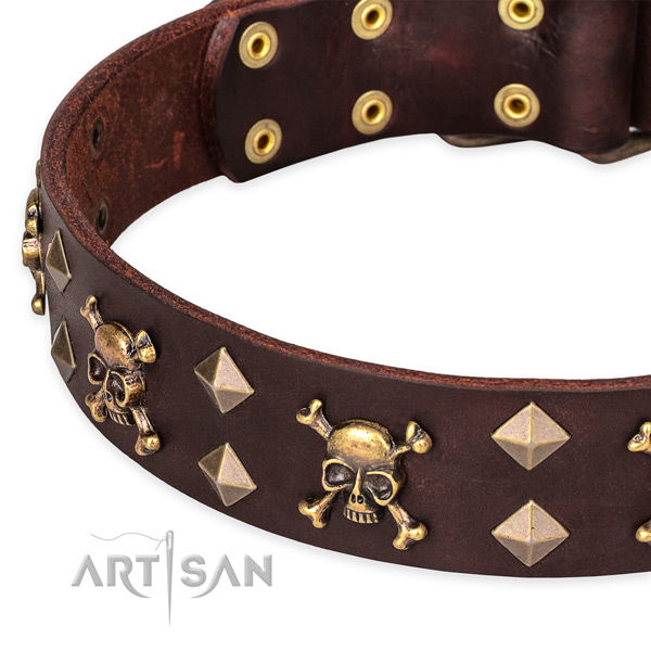 Basic training decorated dog collar of high quality genuine leather