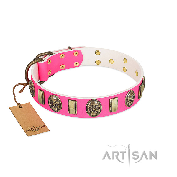 Durable D-ring on genuine leather dog collar for your pet