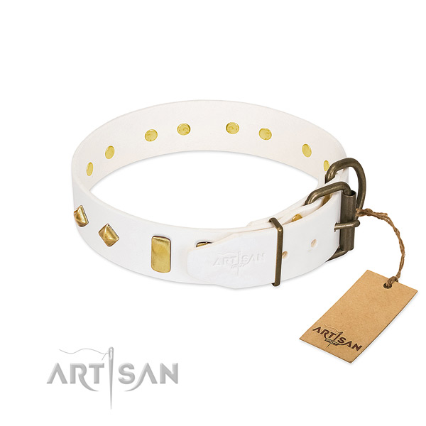 Quality leather dog collar with durable hardware