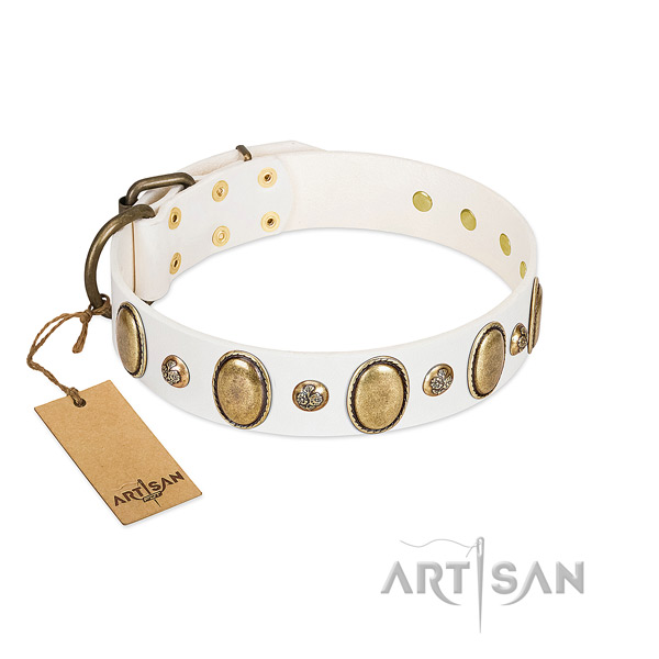 Full grain leather dog collar of top notch material with trendy adornments