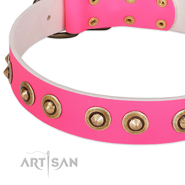 Rust resistant studs on natural genuine leather dog collar for your dog