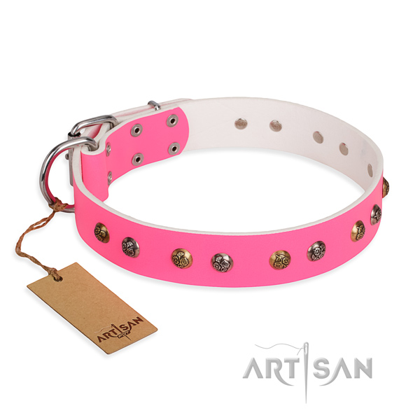 Everyday use trendy dog collar with durable traditional buckle
