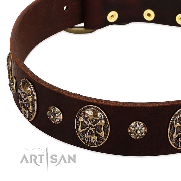 Strong buckle on full grain leather dog collar for your dog