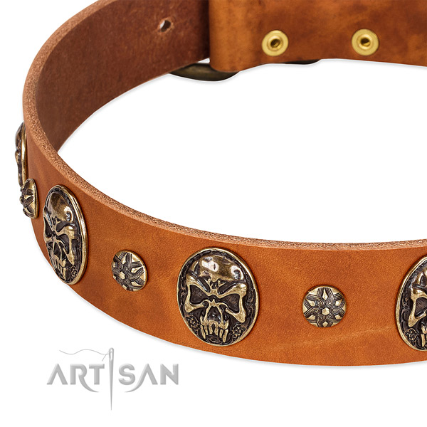 Strong decorations on natural genuine leather dog collar for your dog