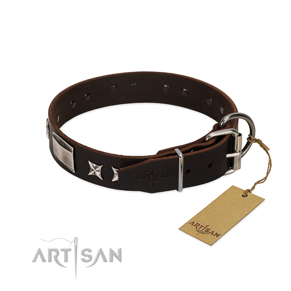 Embellished collar of natural leather for your lovely four-legged friend
