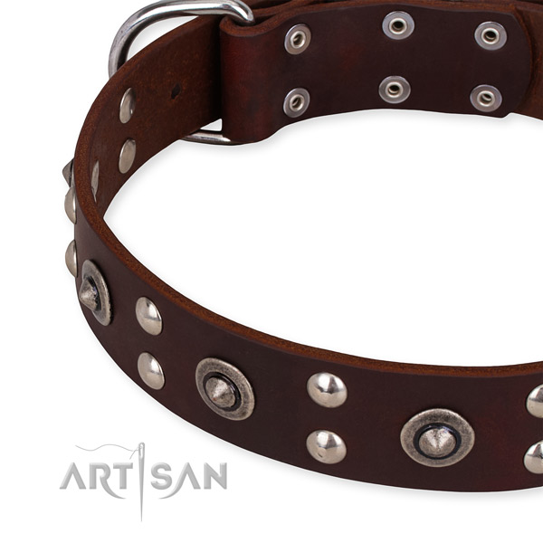 Genuine leather collar with strong hardware for your stylish canine