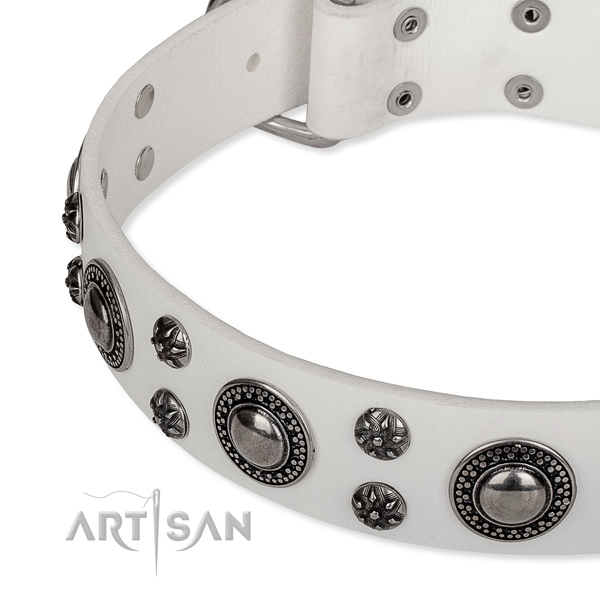 Comfortable wearing embellished dog collar of quality full grain natural leather