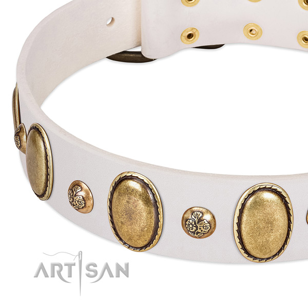 Full grain leather dog collar with fashionable embellishments