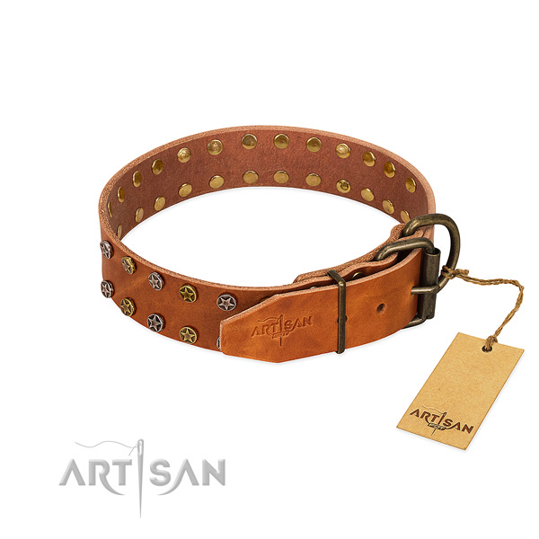 Everyday walking natural leather dog collar with significant studs