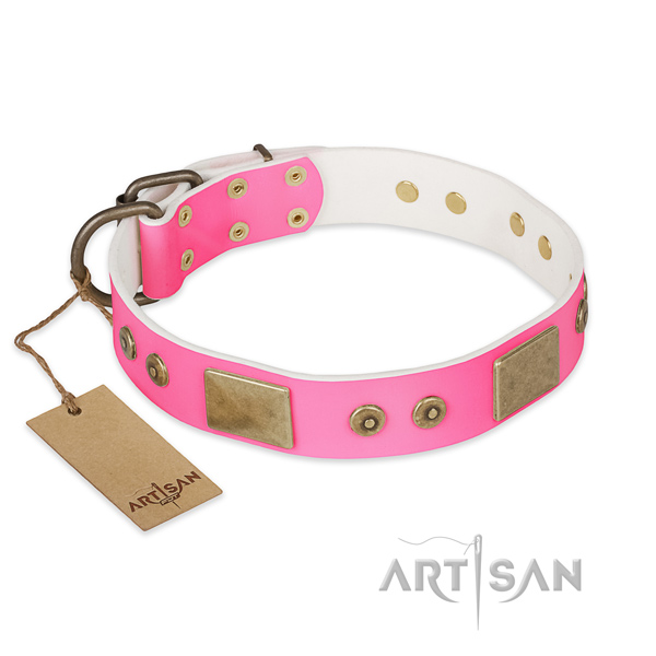Easy wearing full grain natural leather dog collar for stylish walking your canine