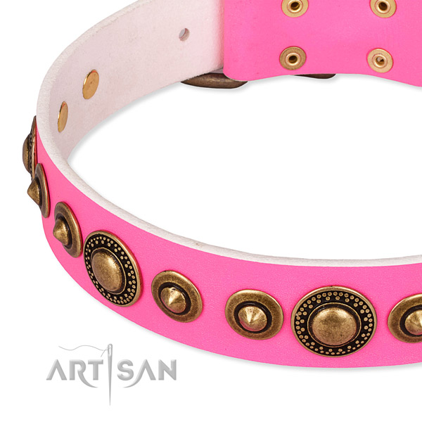 High quality full grain natural leather dog collar created for your lovely pet