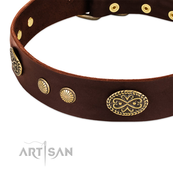 Rust resistant embellishments on genuine leather dog collar for your four-legged friend