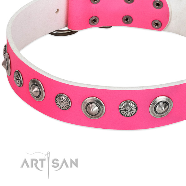 Full grain leather collar with durable traditional buckle for your lovely canine