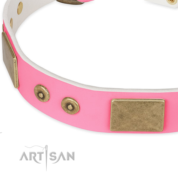 Leather dog collar with embellishments for everyday walking