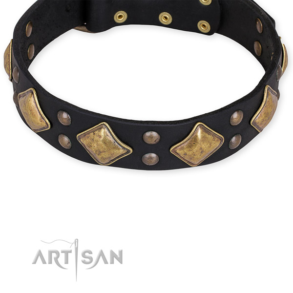 Full grain leather dog collar with exceptional strong embellishments