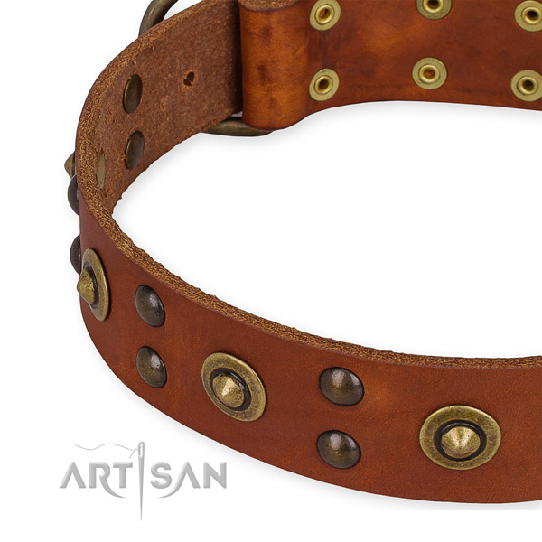 Full grain natural leather collar with durable D-ring for your attractive dog