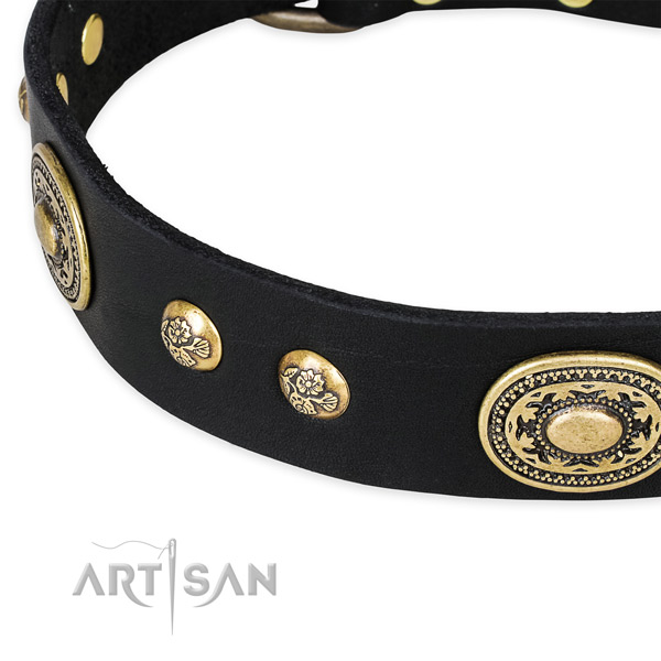 Exceptional full grain leather collar for your attractive dog