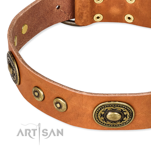 Leather dog collar made of top rate material with adornments