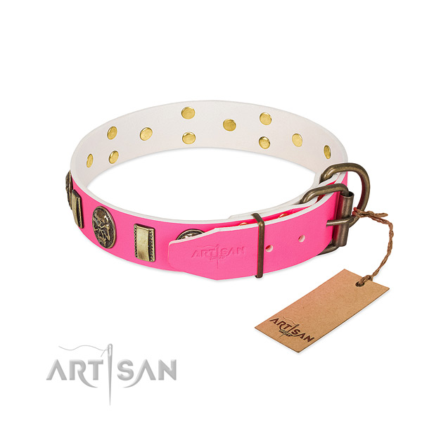 Rust-proof adornments on full grain natural leather dog collar for your doggie