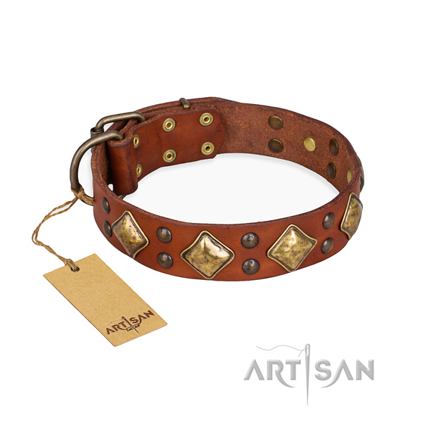 Comfy wearing perfect fit dog collar with durable traditional buckle