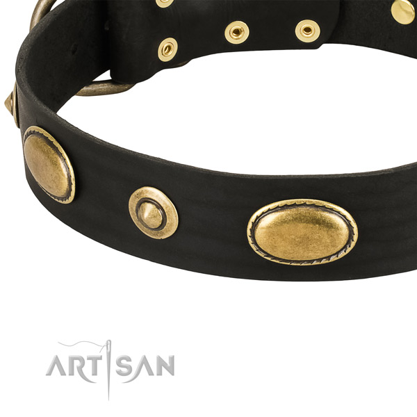 Rust resistant D-ring on natural leather dog collar for your pet