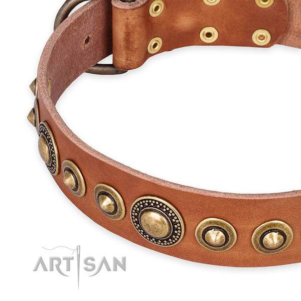 Best quality natural genuine leather dog collar crafted for your handsome doggie
