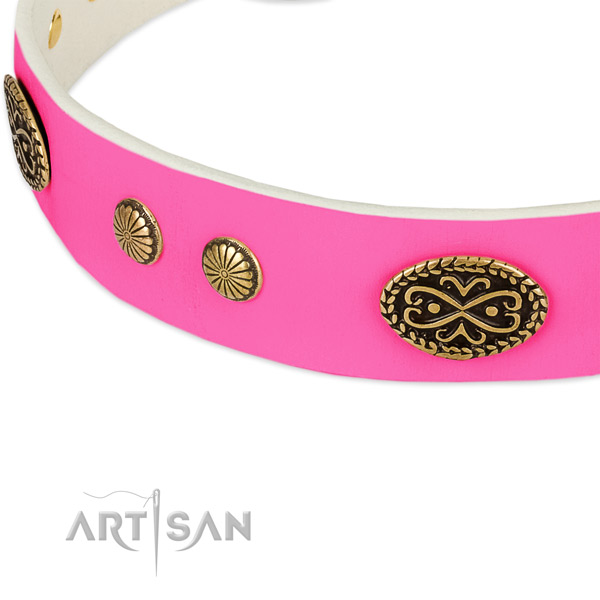 Corrosion resistant embellishments on genuine leather dog collar for your pet