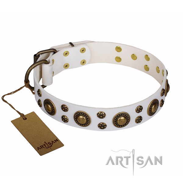 Basic training dog collar of quality full grain genuine leather with decorations